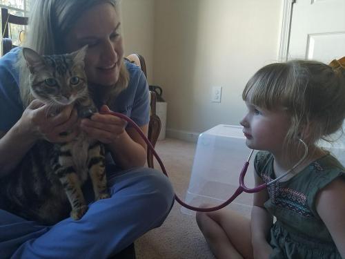 kitty-exam